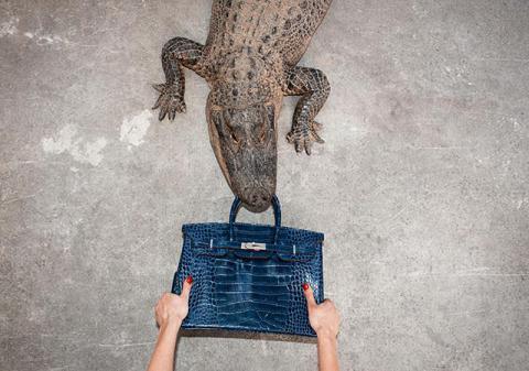 Чому виник скандал навколо сумок Біркін і крокодилів?