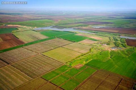 Землі за межами населених пунктів передадуть територіальним громадам