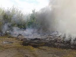 У Миколаєві горить сміттєзвалище (ВІДЕО)