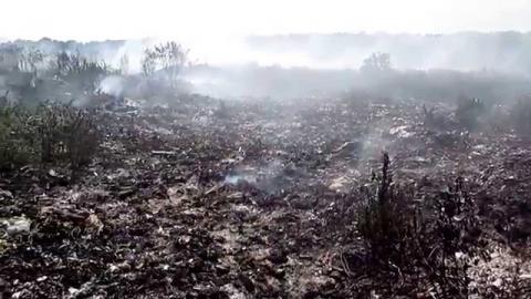 На Львівщині загорілося ще одне сміттєзвалище