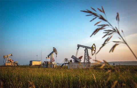 Подорожчання нафти зупинилося