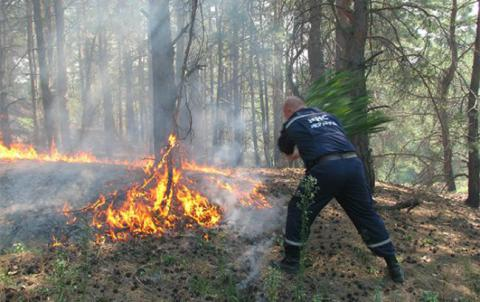 Протягом вихідних відбулося чотири великі лісові пожежі