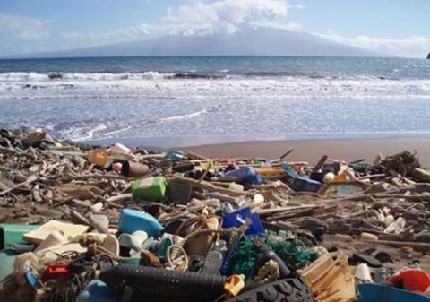 В Одесі буревій наніс в море гори сміття
