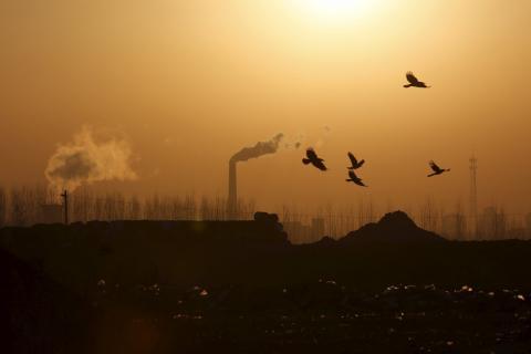 В результаті вибуху парової труби на електростанції в Китаї загинула 21 людина