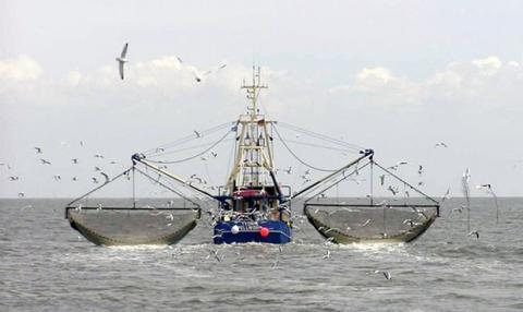 Океанічний риболовецький флот України вперше за 19 років переказав дивіденди до бюджету