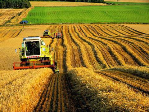 Більшисть українців чекають від ЄС підтримки агробізнесу (ІНФОГРАФІКА)