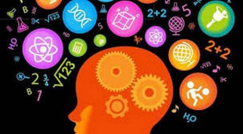 Нейробіологи з'ясували, як покращити пам'ять без ліків
