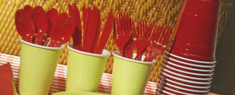 Всі пластикові тарілки, чашки і столове приладдя у Франції буде заборонено до 2020 року