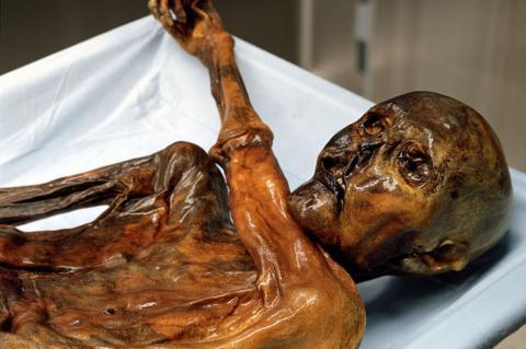 Італійські вчені реконструювали голос мумії (ВІДЕО)