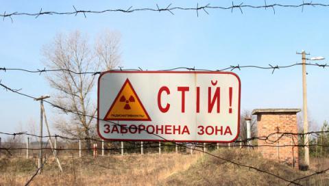 Під ядерний могильник виділили 45 га лісу в Чорнобильській зоні
