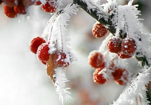 На зміну снігопадам прийдуть сильні морози