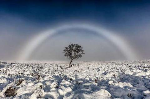 Фотограф зафіксував рідкісну білу веселку