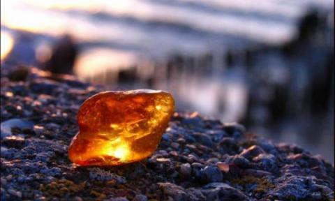 Нелегали знову добувають «сонячне каміння» (ФОТО)