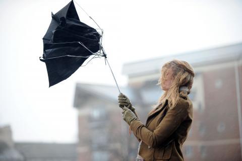 Рятувальники попереджають про сильні пориви вітру в Києві