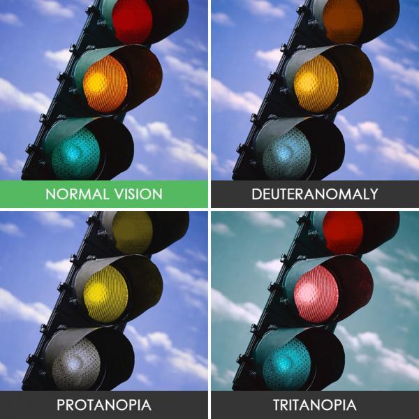 Як бачать світ люди з дальтонізмом (ФОТО)