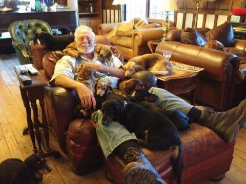 Як жити з великою кількістю собак (ФОТО)