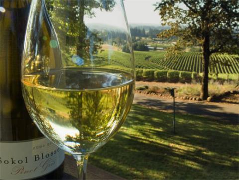 Вчені з'ясували, чим небезпечне біле вино для жінок
