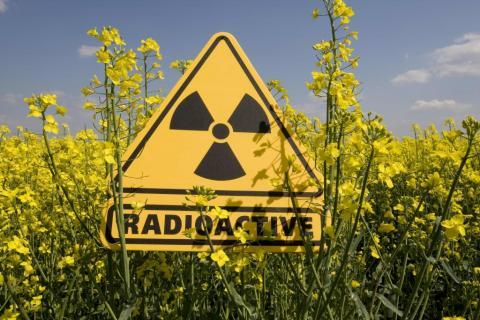 Бойовики можуть влаштувати на Донбасі екологічну катастрофу