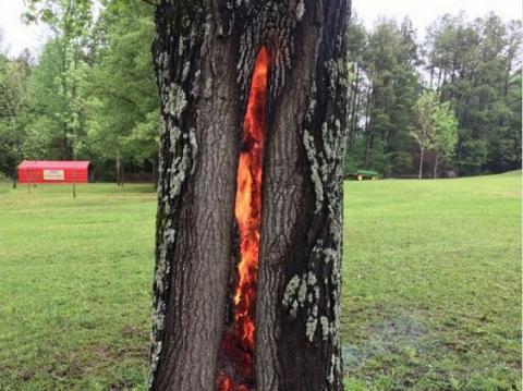 Американці виявили «вогняні ворота пекла»