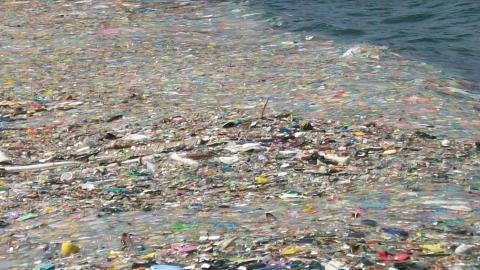 Новий винахід: корабель, який буде очищати океани від сміття