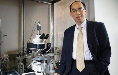 Біологи зімітували хворобу Паркінсона в чаші Петрі