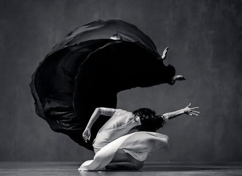 Захоплююча повітряна елегантність рухів в танці (ФОТО)