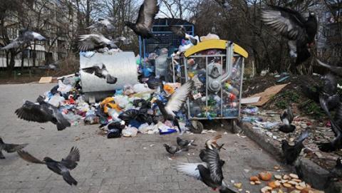 У Львові сміття після зливи плавало по вулицях