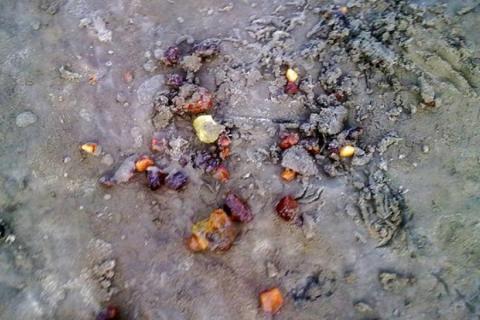 На Житомирщині знайшли рішення, як позбавитися від нелегального видобутку бурштину