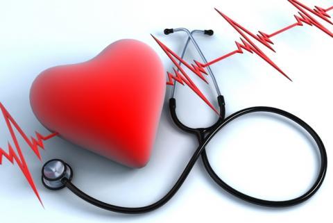Виявлено унікальний ген, що захищає організм від хвороб серця