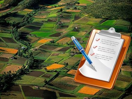 Триває розробка земельної реформи: Гройсман прокоментував можливість продажу землі іноземцям