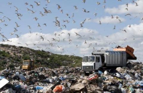 Львівська влада знайшла вирішення проблеми зі сміттям