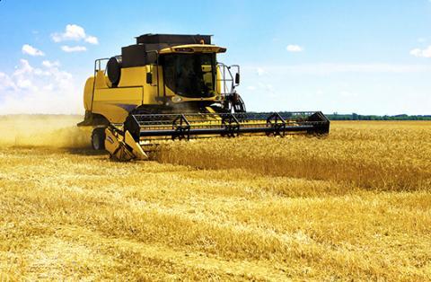 Уряд планує збільшити фінансування сільськогосподарського сектору