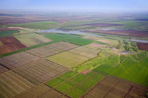 Експерт розповів, що в Україні давно існує земельний ринок, який приносить прибуток тільки владі