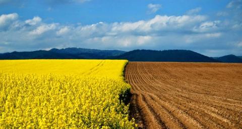 В яких областях українські військові отримають свої землі