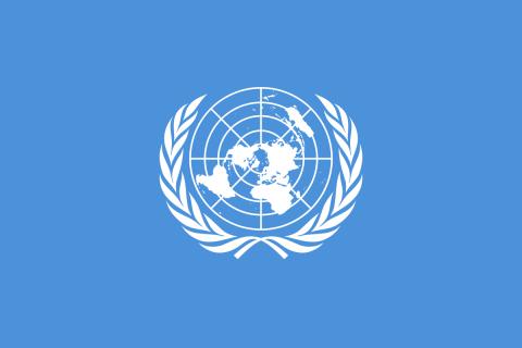 В ООН оголосили конкурс на гранти для розвитку малого бізнесу на Донбасі