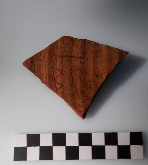 В Україні археологи знайшли унікальні знахідки (ФОТО)