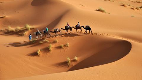 """Сахара може повністю """"позеленіти"""": вчені назвали ймовірні терміни"""