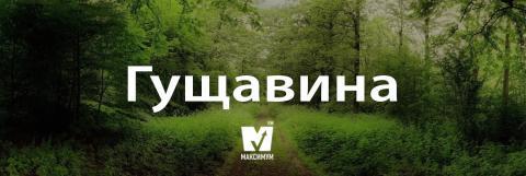 Говори красиво: 10 українських слів, які поповнять ваш словниковий запас (ФОТО)