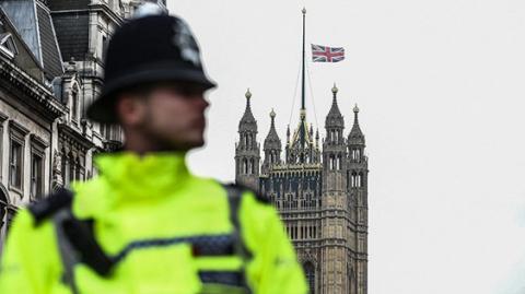 У Лондоні оштрафували 5-річну дівчинку