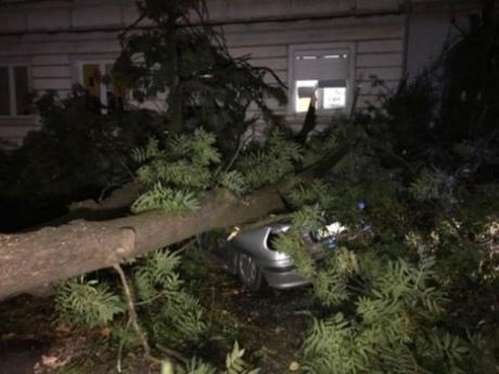 """Шторм """"Ксав'єр"""" у Польщі: 2 загиблих, 39 травмованих, 714 тис. осіб без електрики"""