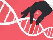 Пісні Майлза Девіса і Deep Purple записали на синтетичну ДНК Finance.ua