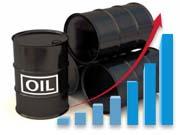 Від початку року Україна в 2,6 рази збільшила імпорт нафти Finance.ua