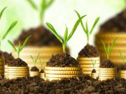 Українці нарощують депозити в гривні, а бізнес — у валюті Finance.ua