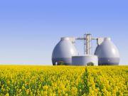 Український банк видав 10 мільйонів євро кредиту на будівництво біогазових заводів Finance.ua