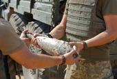 Будні українських саперів в Авдіївській промзоні