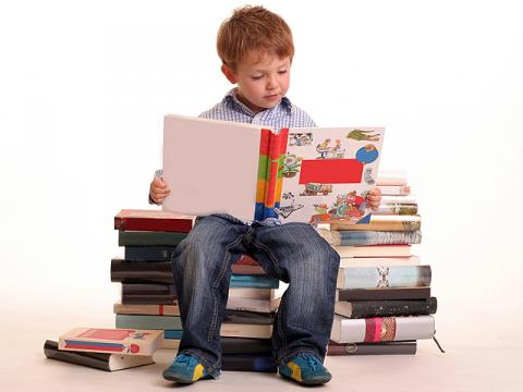 Стало відомо де навчаються діти нардепів і скільки грошей батьки платять за їхню освіту