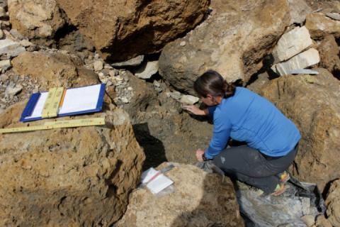 У Швейцарії знайшли ящик з борошном: артефактам 4 тисячі років