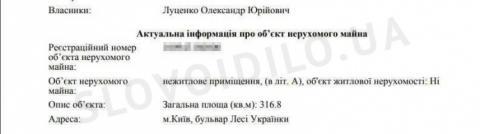 Син Луценка у серпні придбав квартиру