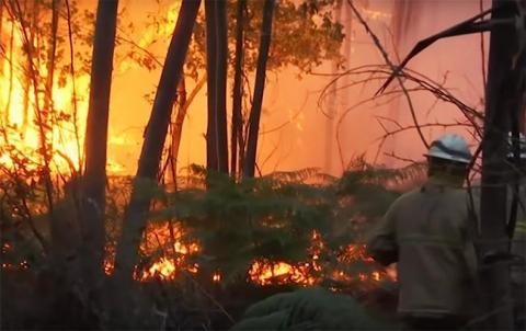 Кільксть жертв лісових пожеж у Іспанії та Португалії збільшилася до 45