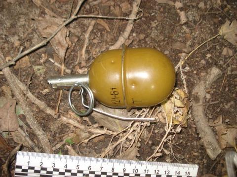 На околиці Києва зловмисники викинули з автомобіля гранати